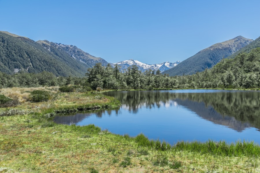 Alpine tarn on Lewis Pass 02