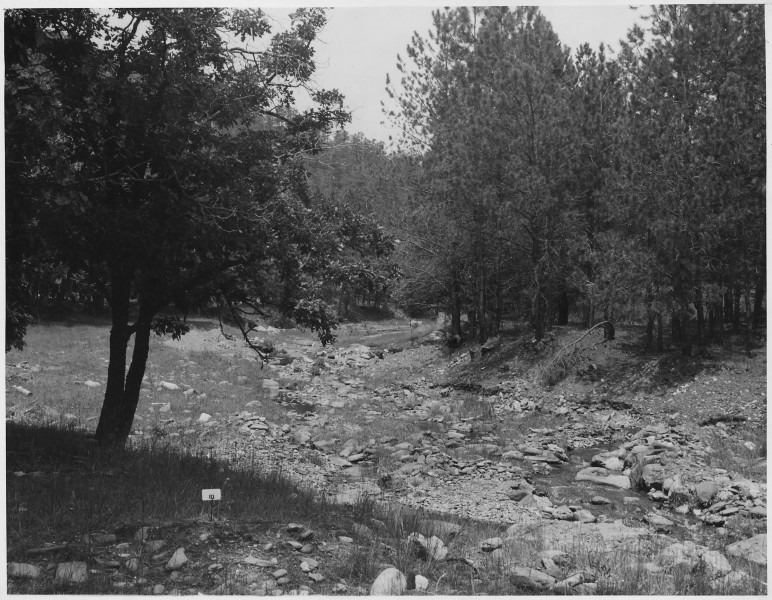 Bed of Battle Creek on Golden Rod Placer - NARA - 286102