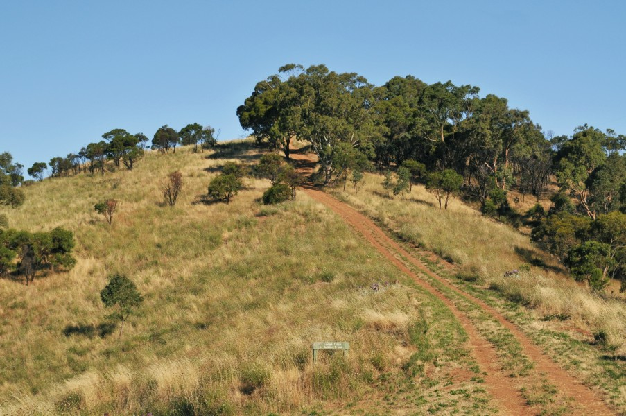 Black hill conservation park track