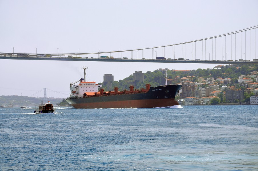 Bosphorus, Fatih Sultan Mehmet Bridge, Turkey 001