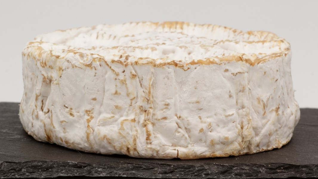 Camembert de Normandie (AOP) 10