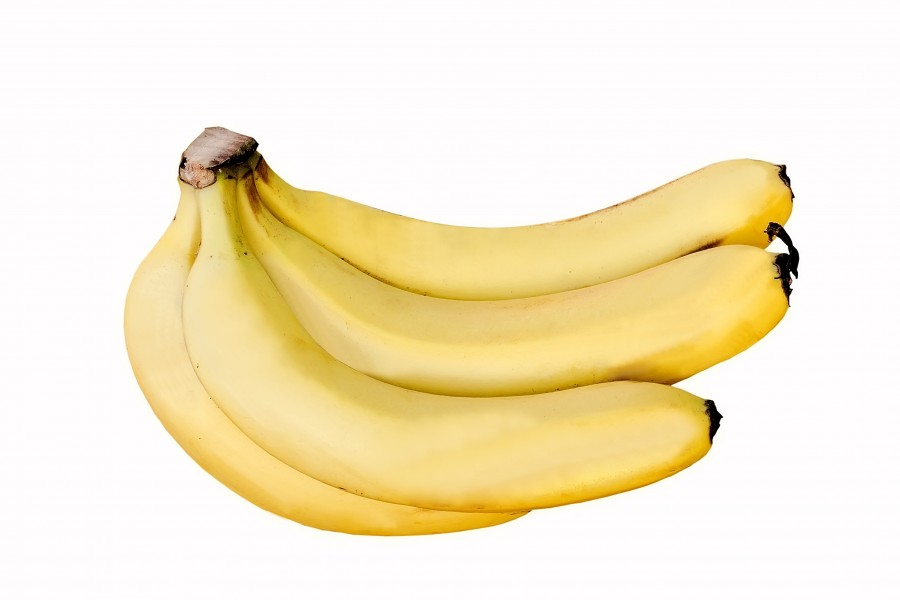 Cavendish Banana DS