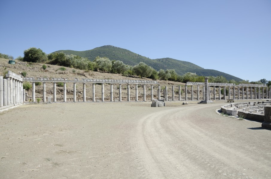 Columns in Ancient Messene (5)