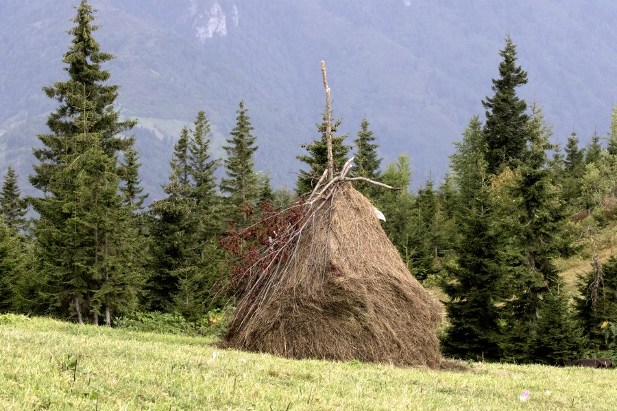 Conical Haystacks 03