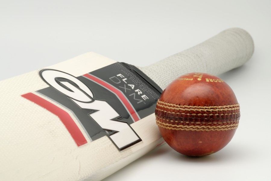 GandM Flare DXM bat-Purist 156g ball