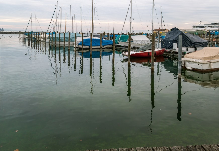 Harbour in Konstanz with green water