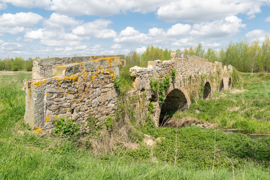 Kalletal - 2015-05-02 - LIP-013 Aberg-Herrengraben (56)