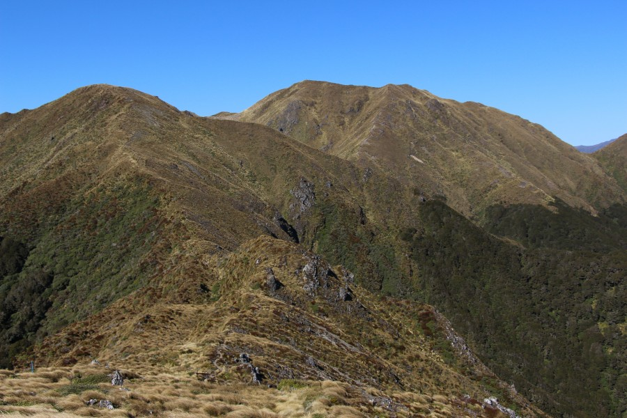 Mt Holdsworth - Jumbo Circuit, Tararua Range, New Zealand 09