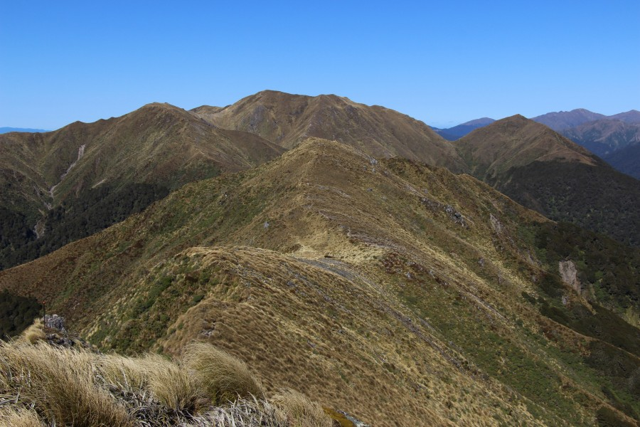 Mt Holdsworth - Jumbo Circuit, Tararua Range, New Zealand 12