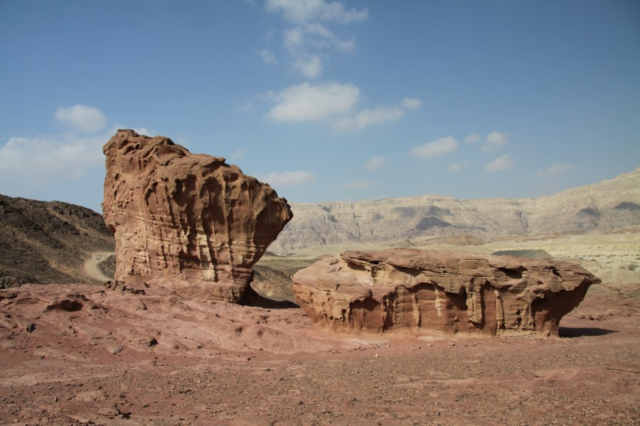 Mushroom and a half in Timna Park in 2011 (2)