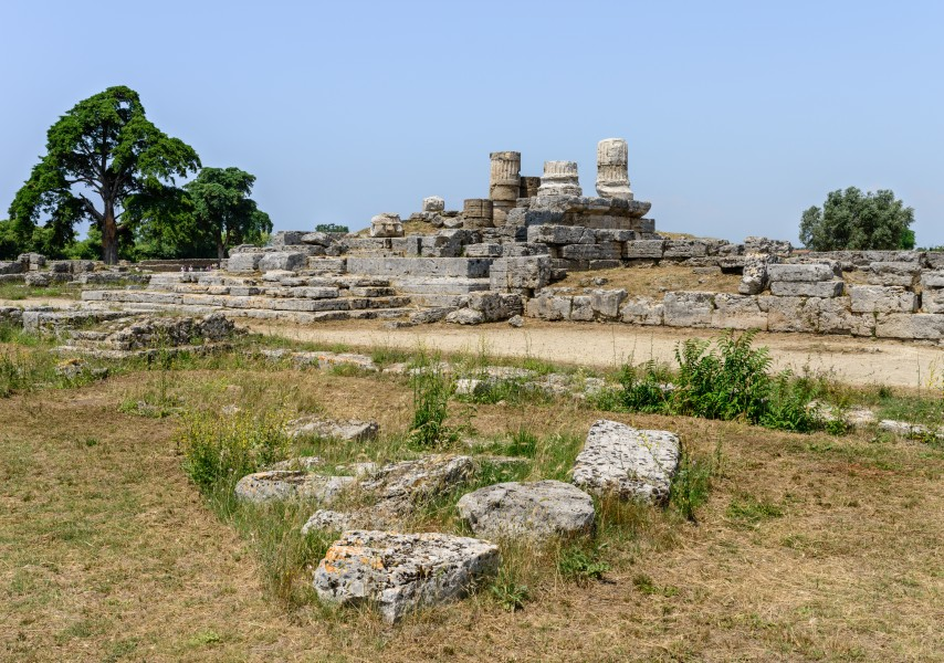 Paestum - Poseidonia - ruins - July 13th 2013 - 04