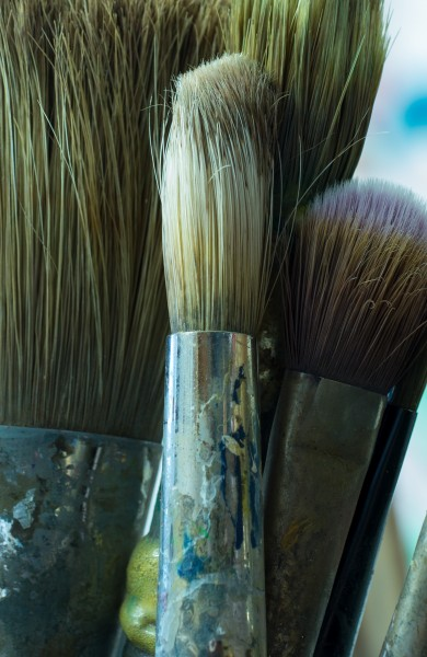 Paint brushes (30800)