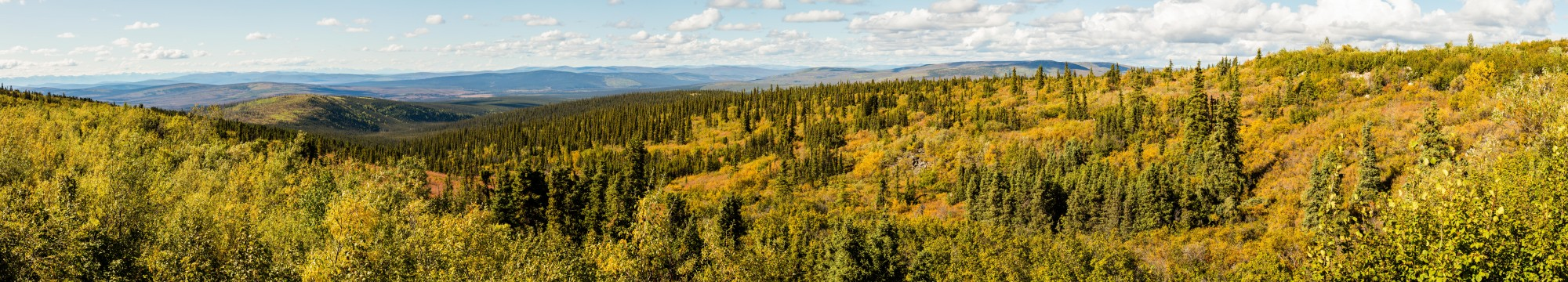 Paisaje en el Sureste de Fairbanks, Alaska, Estados Unidos, 2017-08-28, DD 119-125 PAN