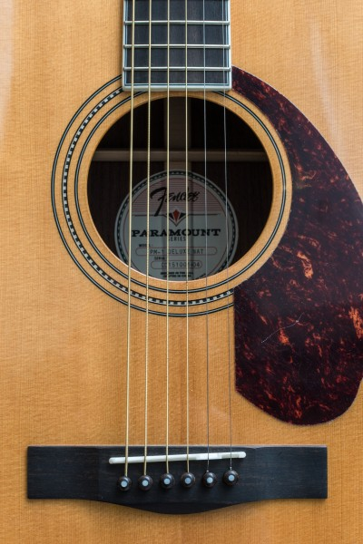 Paramount Series acoustic guitars