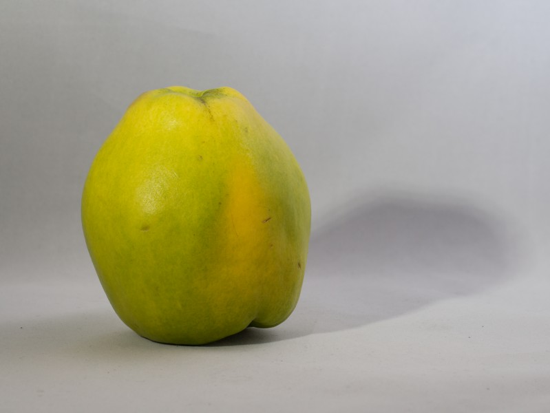 Quince (10895s)