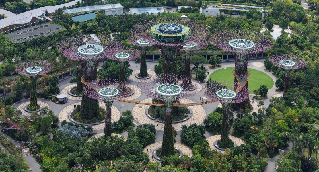 Singapore Supertree-Grove-in-The-Gardens-03