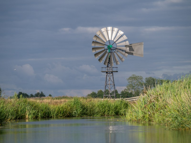 Windmotor in de Alde Feanen