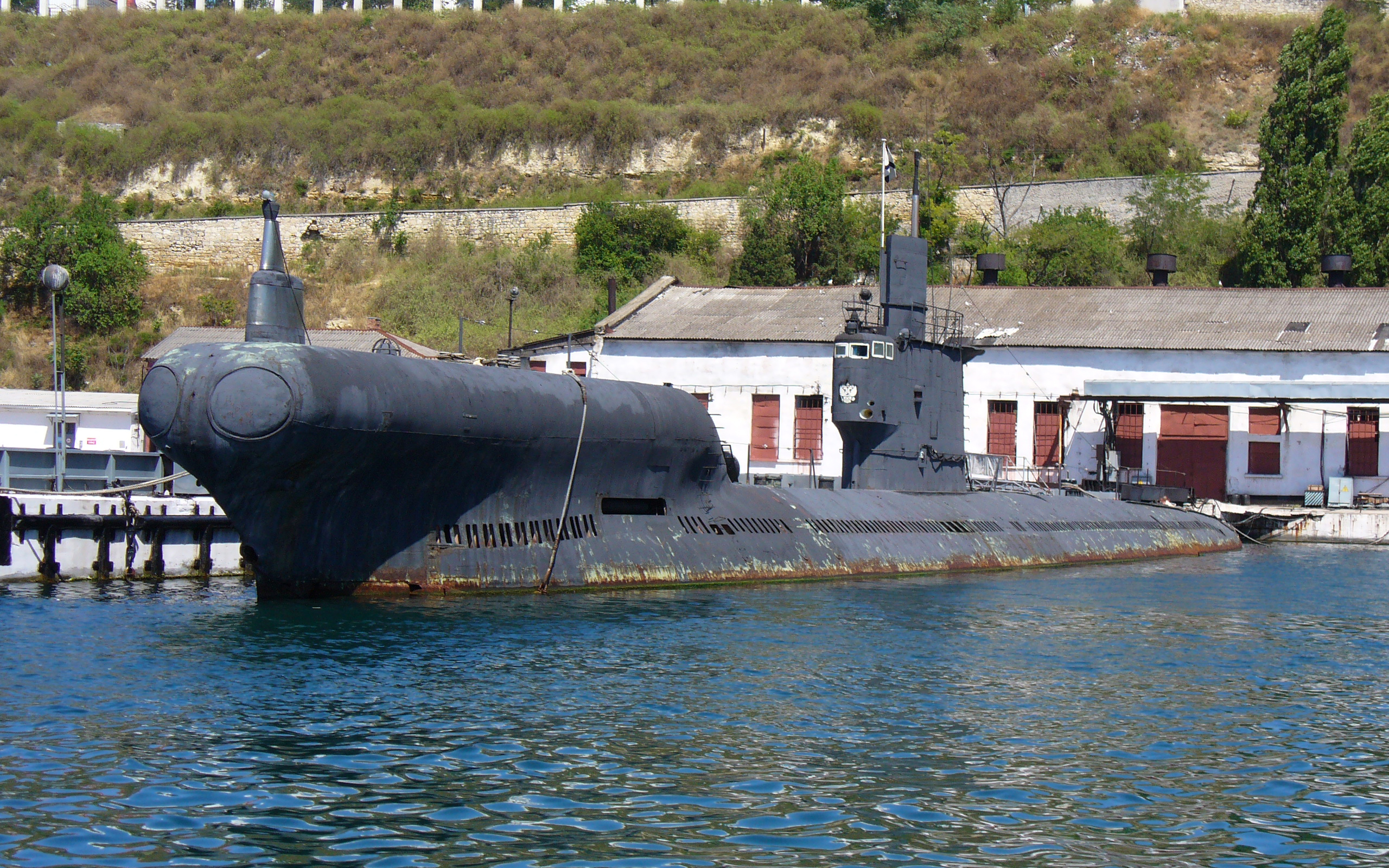 Submarine PZS-50 Project 633RV 2008 G5
