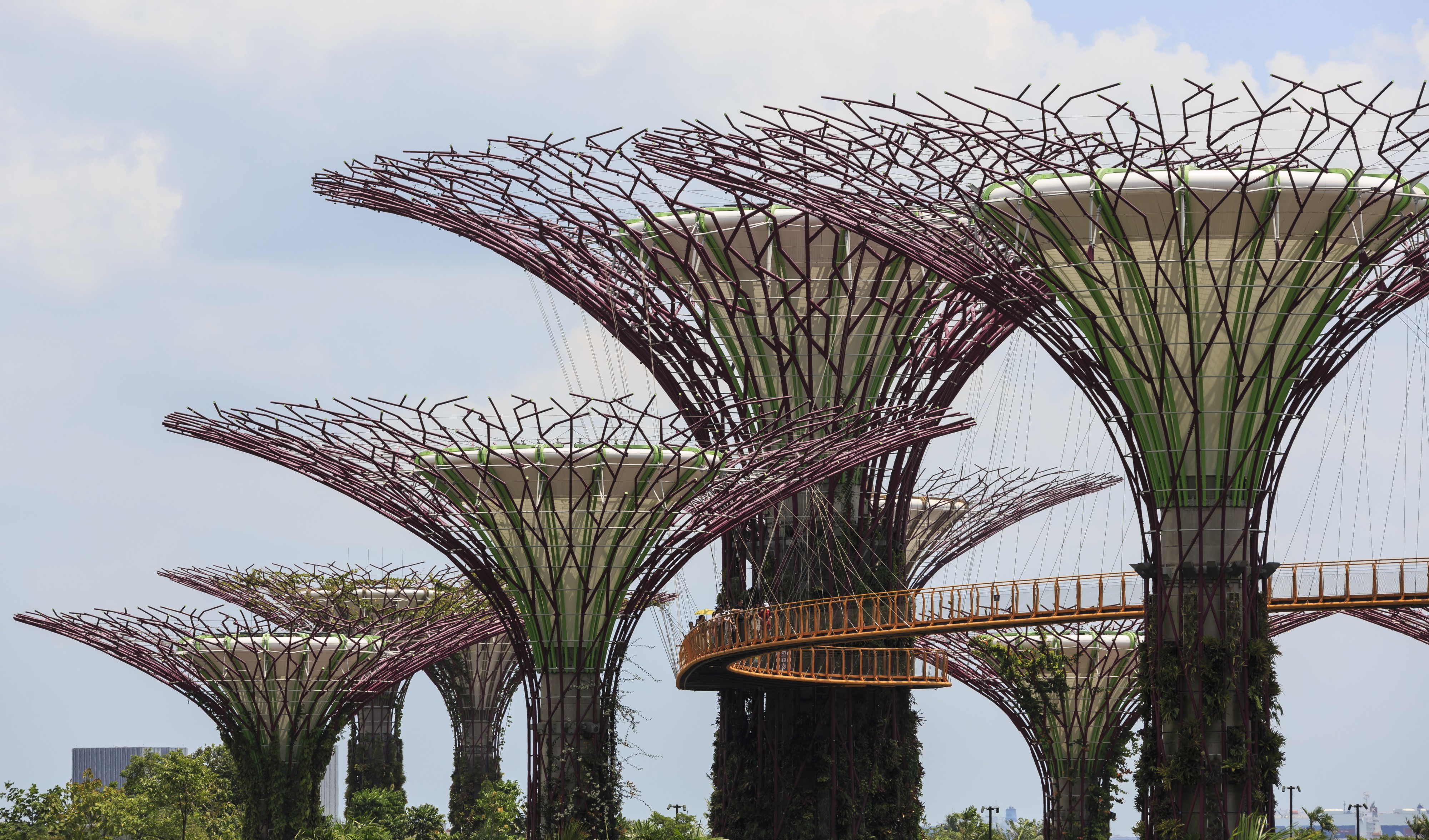 Singapore Supertree-Grove-in-The-Gardens-01