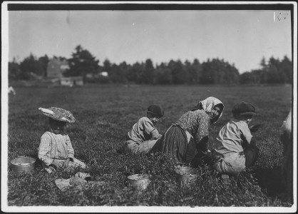 Abbe, 10 years old who picks 10 pails a day. Also two young Italian illiterates. Rochester, Mass. - NARA - 523470