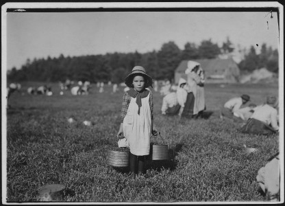 Merilda, carrying cranberries. Rochester, Mass. - NARA - 523476