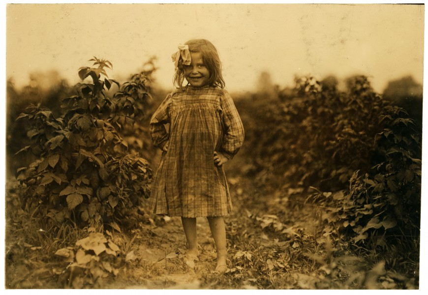 Lewis Hine, Laura Petty, a 6 year old berry picker on Jenkins farm, Rock Creek, Maryland, 1909