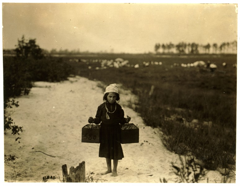 Lewis Hine, Rose Biodo, age 10, berry carrier, Browns Mills, New Jersey, 1910