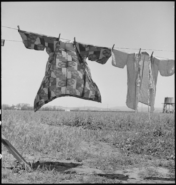 San Lorenzo, California. Washday 48 hours before evacuation of persons of Japanese ancestry from th . . . - NARA - 537542