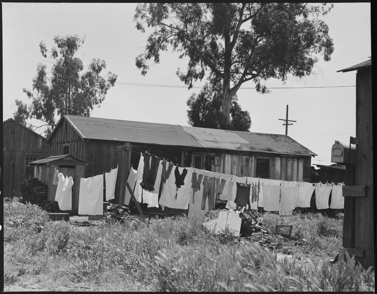 San Lorenzo, California. Washday 48 hours before evacuation of persons of Japanese ancestry from th . . . - NARA - 537544