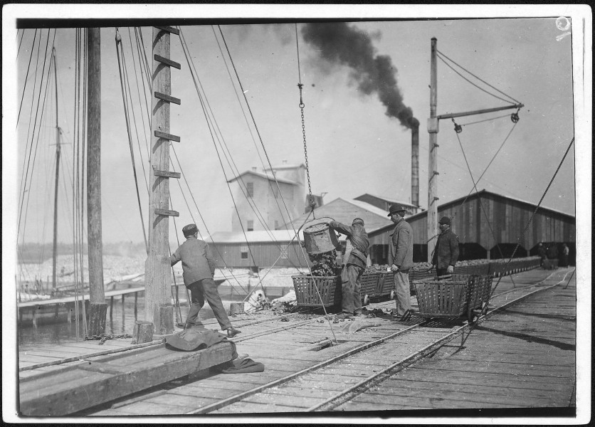 Unloading oysters on the dock. Alabama Canning Co. Bayou La Batre, Ala. - NARA - 523399