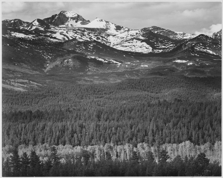 View of trees and snow-capped mountains,