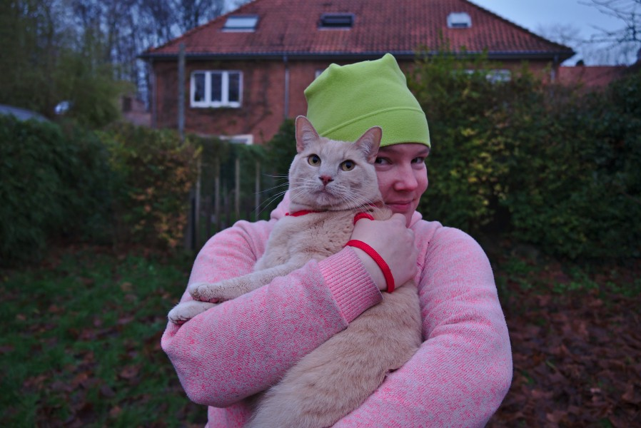 Cat in a harness being held by a pink human in Auderghem, Belgium