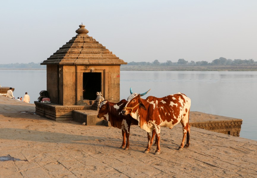 Ghats of Maheshwar 01