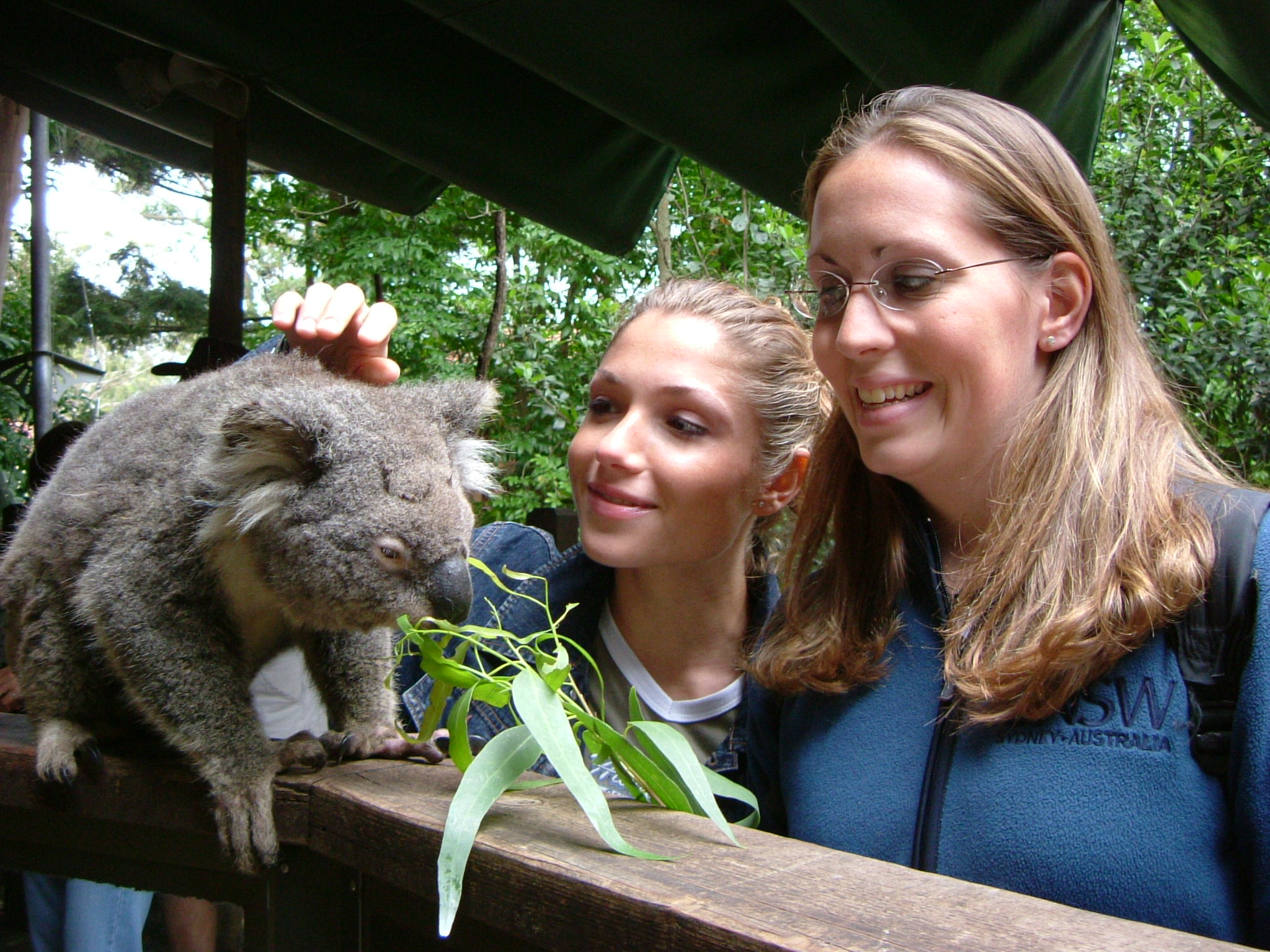 Two Girls and Koala