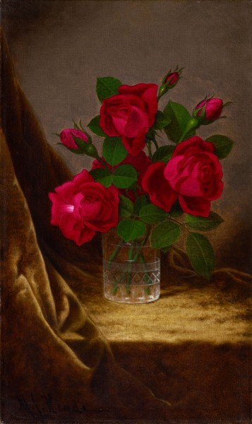Jacqueminot Roses-Martin Johnson Heade