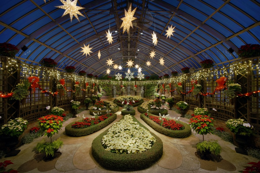 Phipps Conservatory winter 2015 Broderie Room