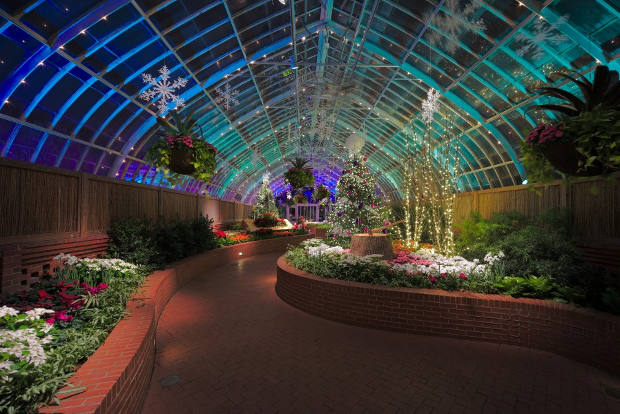 Phipps Conservatory winter 2015 Serpentine Room 2