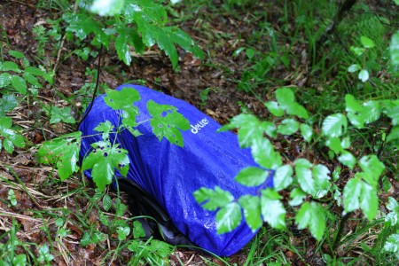 Deuter backpack in a rainy forest, picture 7