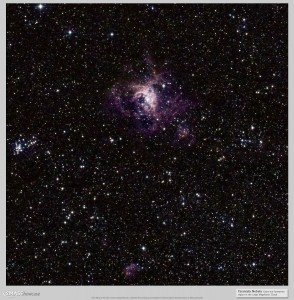 2MASS Image of the Tarantula Nebula