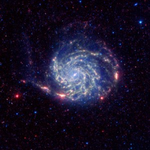 No Organics Zone Circles Pinwheel Galaxy