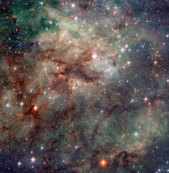Close-up Tarantula Nebula