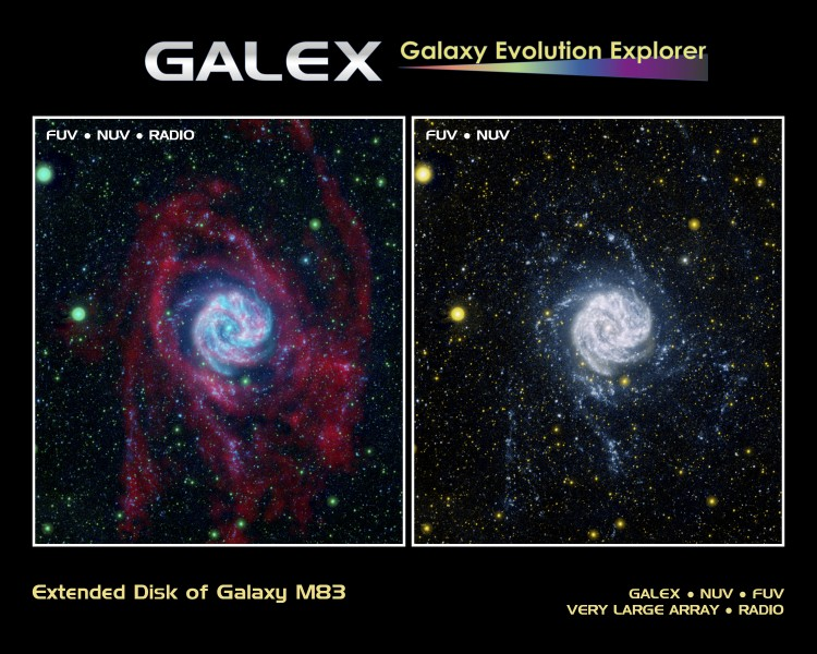 Extended Disk of Galaxy M83