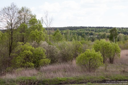 a landscape in the west of Ukraine in May 2016, picture 1