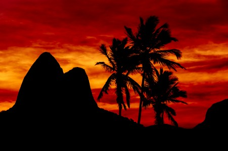 Ipanema Silhouettes in Red
