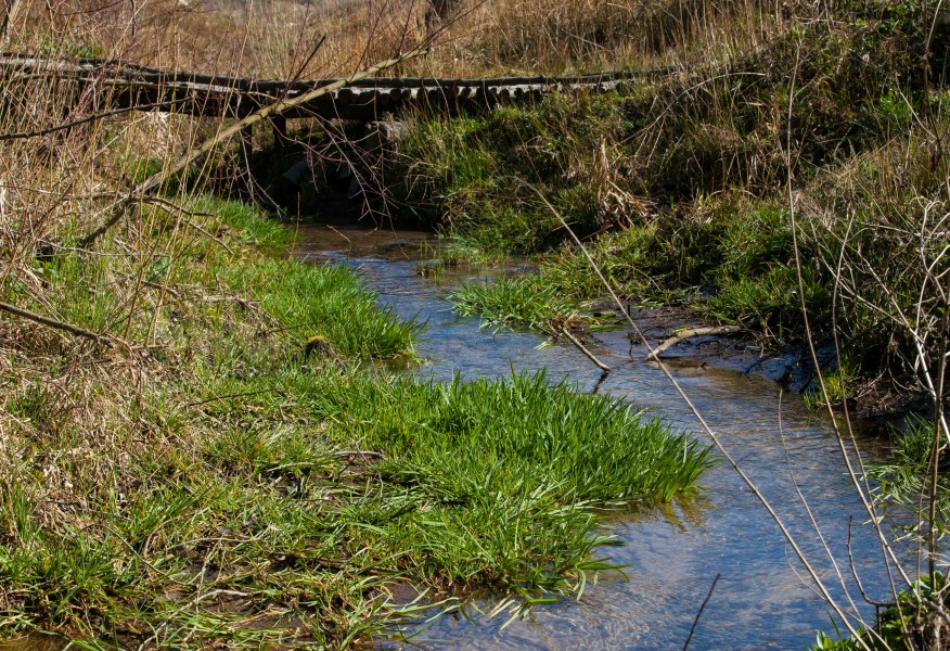 a streamlet in Lviv region of Ukraine in March 2014, picture 3/5