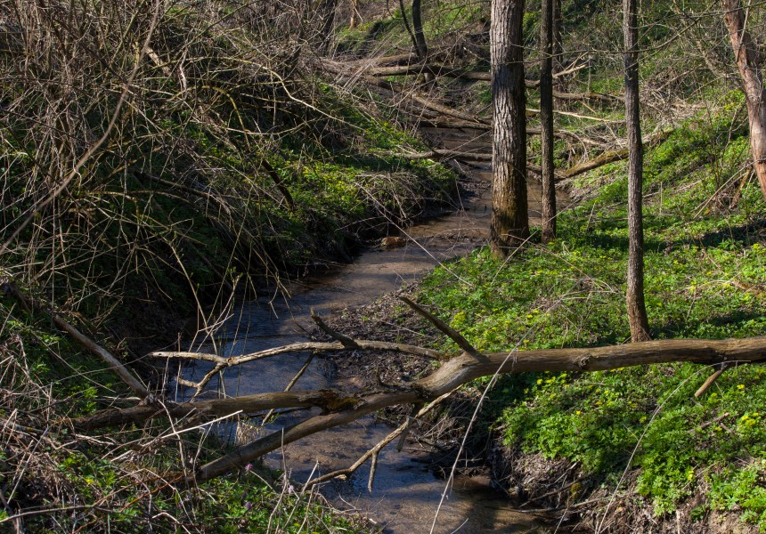 a streamlet in Lviv region of Ukraine in March 2014, picture 4/5