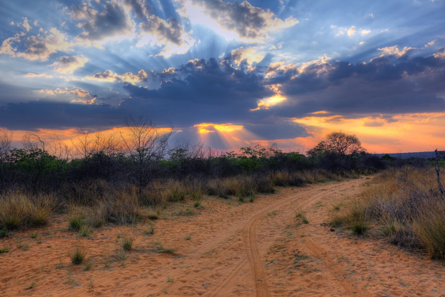 Crepuscular rays at Sunset near Waterberg Plateau