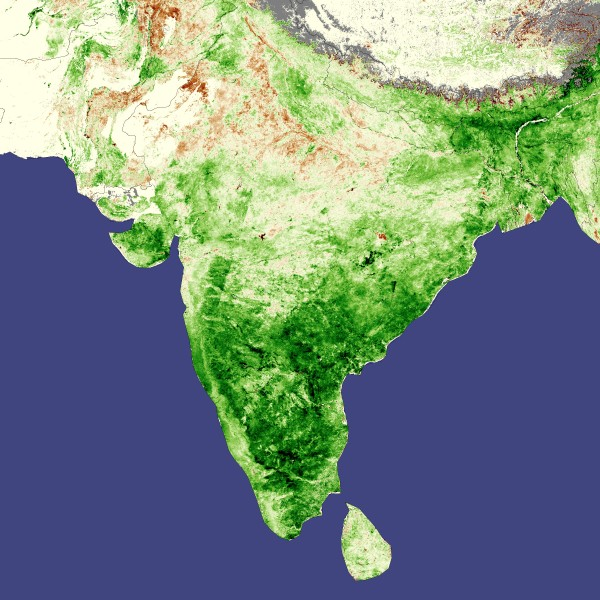 India vegetation, natural and cultivated, favorable weather boosts Indian agriculture, April 2008