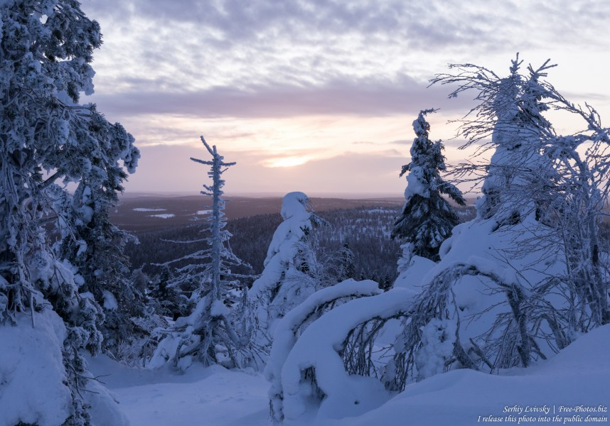 Iso-Syote, Finland, photographed in January 2020 by Serhiy Lvivsky, picture 4