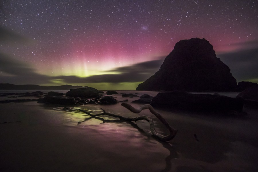 Lion Rock, driftwood and Aurora Australis
